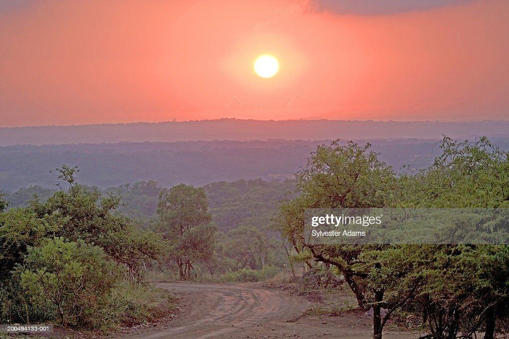 South Africa, Kwazulu-Natal, dirt road at sunrise