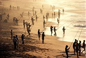 South Africa, near Durban, men on beach fishing for shad