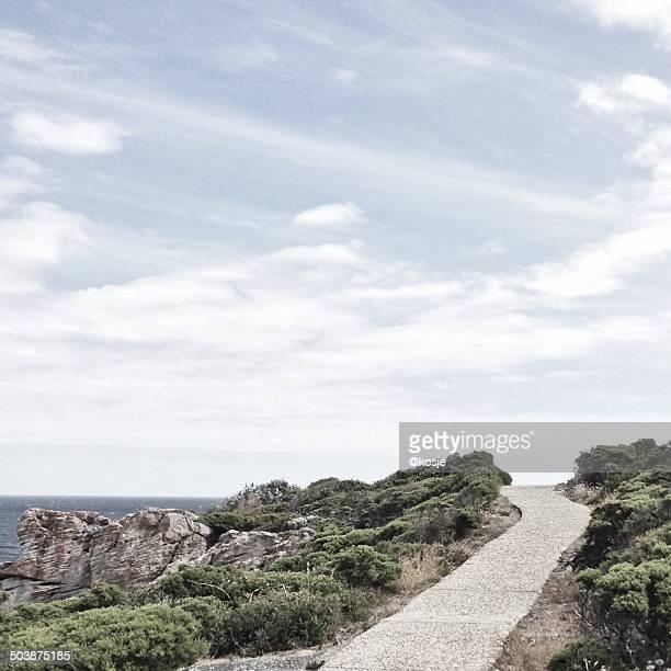South Africa, Western Cape, Overberg District Municipality, Hermanus, Pathway through coastal vegetation