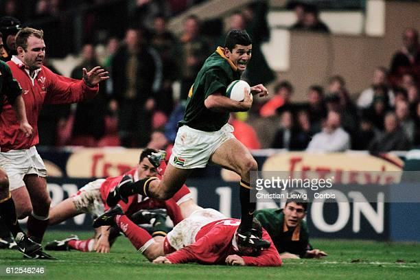 South African scrum half Joost van der Westhuizen during a test match against Wales