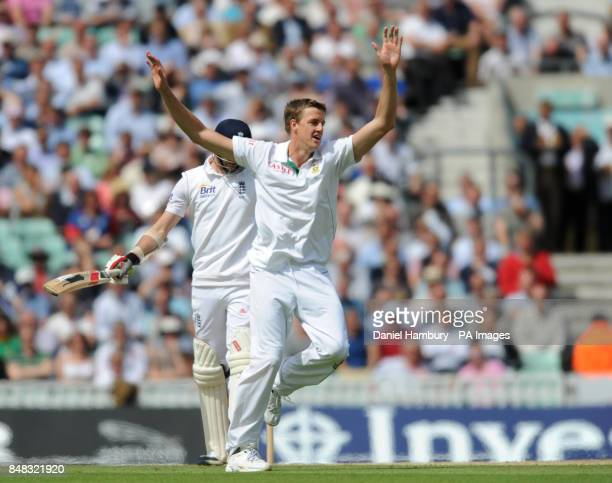 South Africa's Morne Morkel celebrates the wicket of England's James Anderson during the Investec first test match at the Kia Oval London
