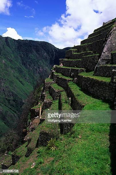 South America Peru Sacred Valley Machu Picchu Terraced Fields
