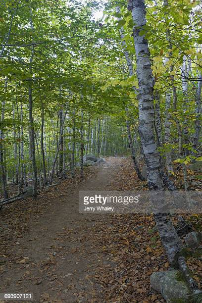 South Bubble Trail, Acadia National Park