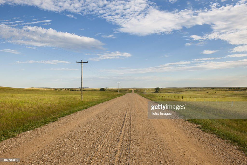 USA, South Dakota, Buffalo Gap National Grasslands, Dirt road crossing prairie