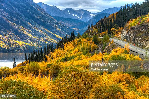 South Klondike highway in fall colors