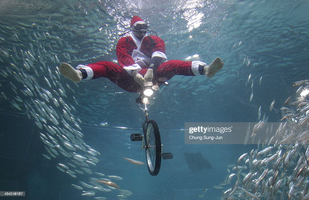 South Korean divers clad in Santa Claus costume swim with sardines at the Coex Aquarium on December 8, 2013 in Seoul, South Korea. Even though the official religion of South Korea is Buddhism, about 30 percent of it is Christian and Christmas is one of the biggest holidays to be celebrated in South Korea.