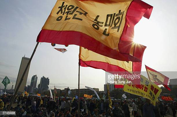 South Korean farmers attend an antiFTA and antigovernment rally near the national assembly on November 19 2003 in Seoul South Korea The violence...