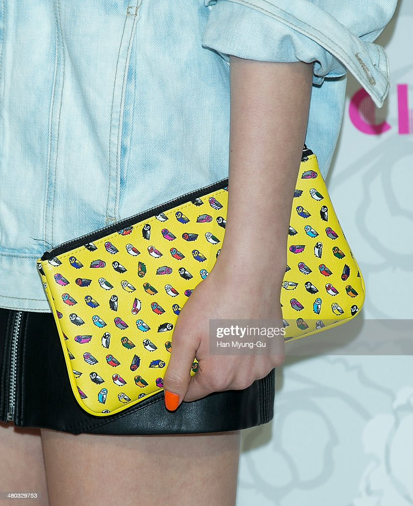 South Korean model Koo Eun-Ae (bag detail) attends the 'Lucky Chouette' Lucky Style 2014 F/W Collection at the Grand Hyatt Hotel on March 24, 2014, in Seoul, South Korea.
