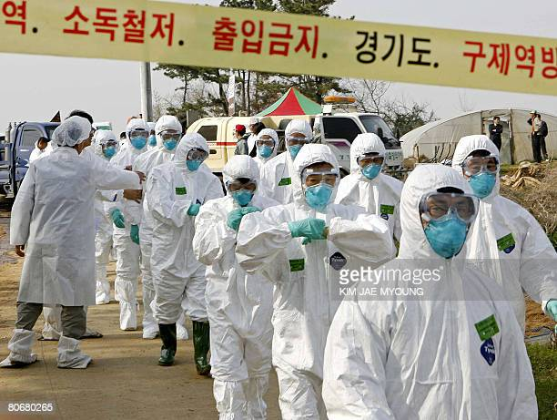 South Korean quarantine officials march into a poultry farm on April 15 in Pyeongtaek 70 kilometres south of Seoul where a suspected bird flu case...