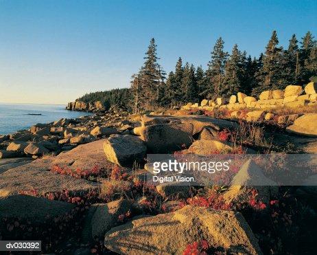 Southeast shoreline of Acadia National Park, Maine, USA : Stock Photo