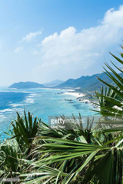Southern Japanese coastline with fringing reef