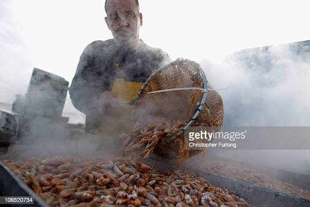 Southport shrimp fisherman Christian Peet works on his amphibious craft boiling potted brown shrimp to give them their pink colour on the vast tidal...