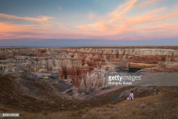 Southwest Arizona Navajo Indian reservation four corners Dine woman in traditional dress MR