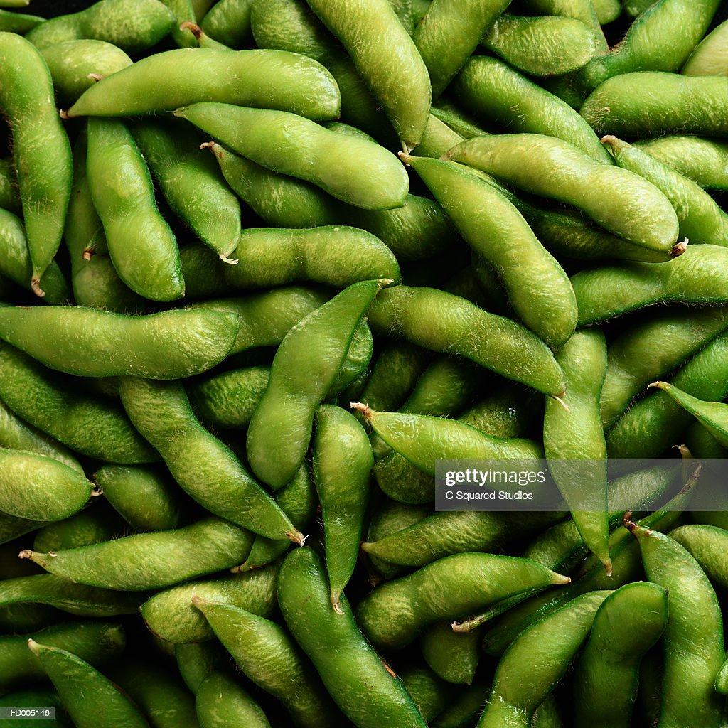 Soy Bean Background : Stock Photo