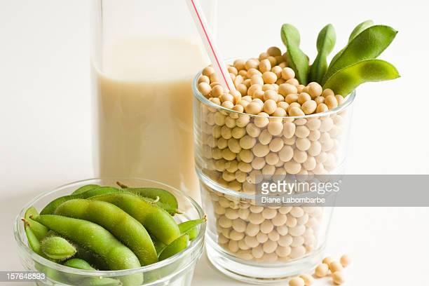 豆乳コンセプト、ガラス充填したルーズな大豆