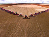 CAMPO VERDE, MATO GROSSO, BRAZIL - MARCH 02, 2008: Mass soybean harvesting at a farm in Campo Verde