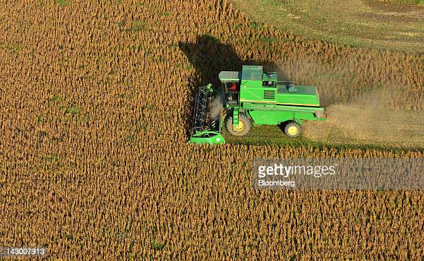 Soybeans are harvested near Rojas Argentina on Monday April 16 2012 South America's soybean crop will turn out smaller than expected a week ago on...