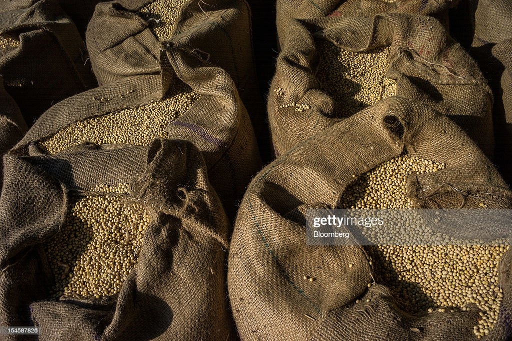 Soybeans packed in gunny sacks are displayed for sale at a grain market in Burhanpur, Madhya Pradesh, India, on Friday, Oct. 19, 2012. Global soybean consumption will drop about 3 million metric tons in 2012-2013 as record prices curb demand for the oil made from the oilseed for food and biofuel, Thomas Mielke, executive director of Oil World, said. Photographer: Sanjit Das/Bloomberg via Getty Images