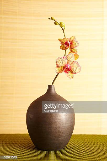 Spa still life of orchid flower in vase