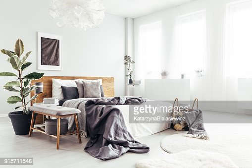 Spacious bedroom with windows : Stock Photo