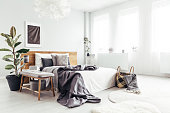White spacious bedroom interior with windows, potted plant and basket with blanket standing by the bed