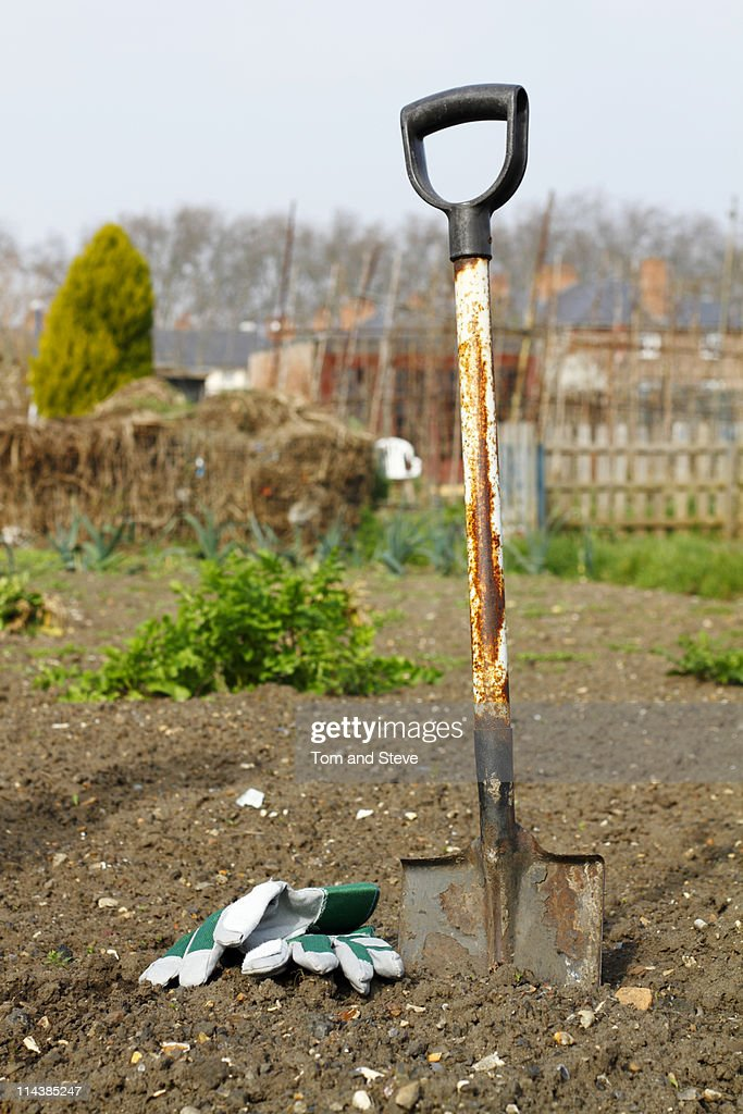 Spade in the earth  at the allotment