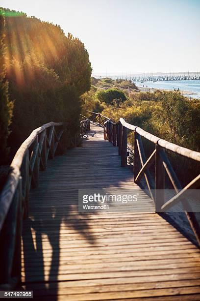 Spain, Andalusia, Huelva, boardwalk through nature park at backlight