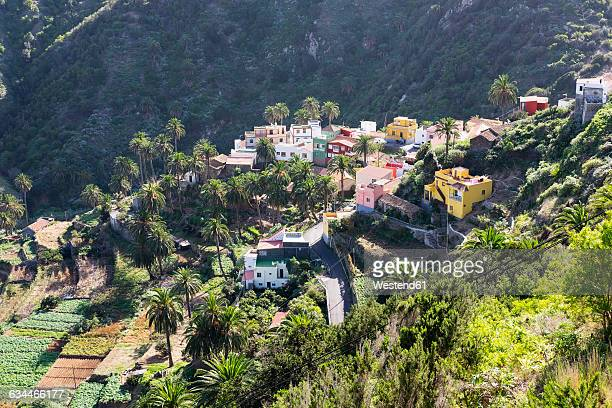Spain, Canary Islands, La Gomera, Vallehermoso, Macayo
