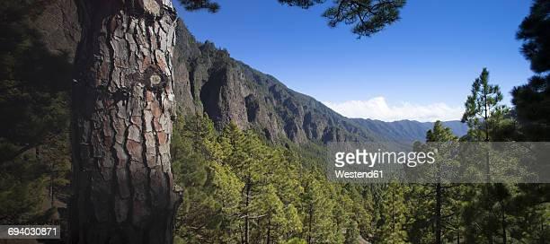 Spain, Canary Islands, La Palma, Caldera de Taburiente National Park