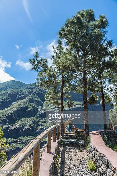 Spain, Gran Canaria, Valle de Agaete, tourist at viewpoint