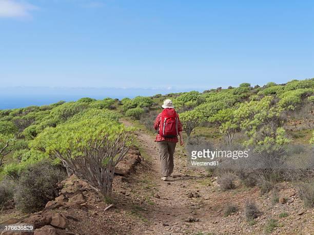 Spain, La Gomera, Mature woman hiking through Euphorbia shrubs at La Merica mountain