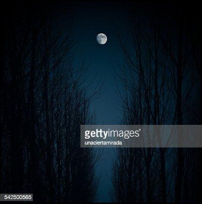 Spain, Madrid, Moon