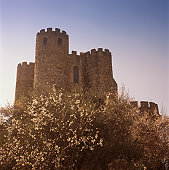 Spain, Madrid Province, Villafranca del Castillo, low angle view