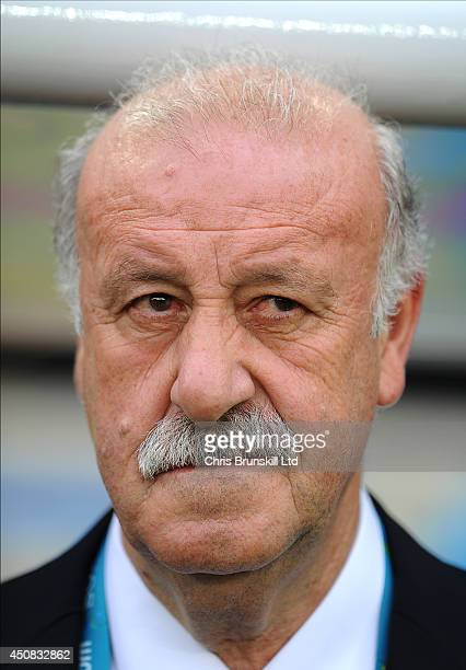 Spain manager Vicente Del Bosque looks on during the 2014 FIFA World Cup Brazil Group B match between Spain and Chile at Maracana Stadium on June 18...