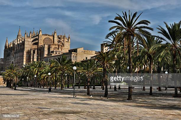 Spain, Palma, Mallorca, View of cathedral Santa Maria