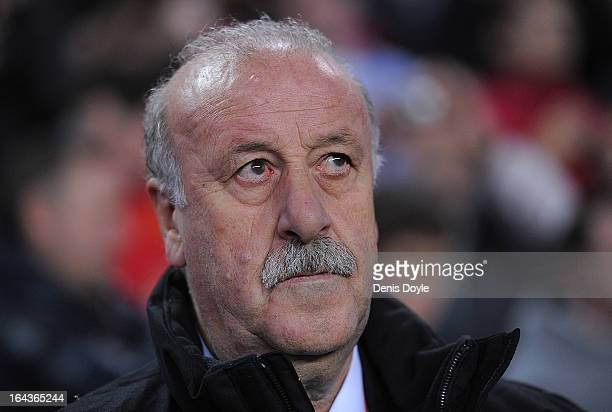 Spain's head coach Vicente del Bosque looks on before the start of the FIFA 2014 World Cup Qualifier between Spain and Finland at estadio El Molinon...