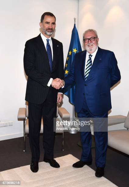 Spain's King Felipe VI and the Parliamentary Assembly of Council of Europe President Pedro Agramunt shake their hands ahead of a meeting in...