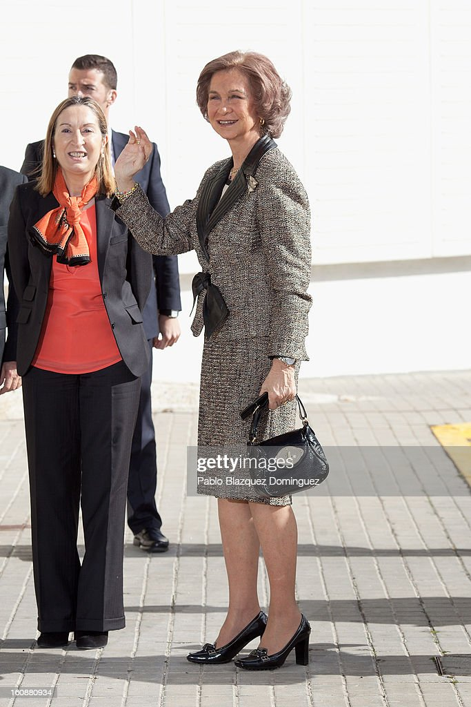 Spain's Public Works Minister Ana Pastor and <a gi-track='captionPersonalityLinkClicked' href=/galleries/search?phrase=Queen+Sofia+of+Spain&family=editorial&specificpeople=160333 ng-click='$event.stopPropagation()'>Queen Sofia of Spain</a> visit the National Biotechnology Centre on February 7, 2013 in Madrid, Spain.