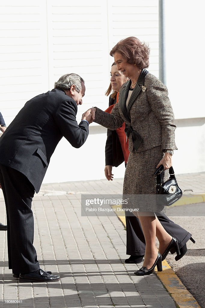 Spain's Public Works Minister Ana Pastor and <a gi-track='captionPersonalityLinkClicked' href=/galleries/search?phrase=Queen+Sofia+of+Spain&family=editorial&specificpeople=160333 ng-click='$event.stopPropagation()'>Queen Sofia of Spain</a> visits the National Biotechnology Centre on February 7, 2013 in Madrid, Spain.