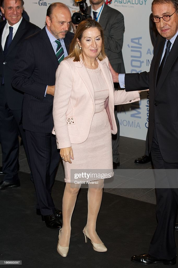 Spain's Public Works minister Ana Pastor attends 'La Razon' Newspaper 15th Anniversary on November 4, 2013 in Madrid, Spain.
