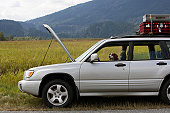 Spaniel in sports utility vehicle parked at roadside with bonnet open