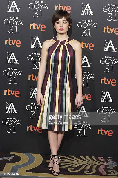 Spanish actress Ana Castillo attends the Goya cinema awards candidates 2016 cocktail at the Ritz Hotel on January 12 2017 in Madrid Spain