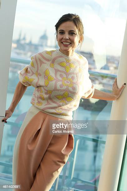 Spanish actress Elena Anaya attends the 'Pense Que Iba a Haber Fiesta' photocall at the Mercure Hotel on January 8 2014 in Madrid Spain