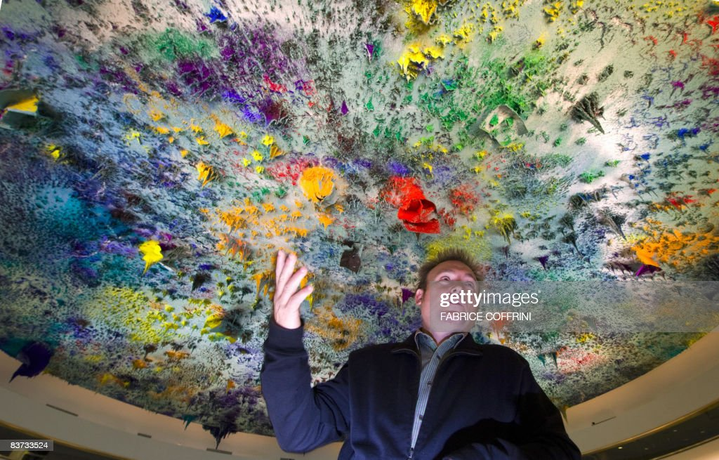 Spanish artist Miquel Barcelo poses inside Room XX on November 17 2008 at the United Nations offices in Geneva Top contemporary Spanish artist...