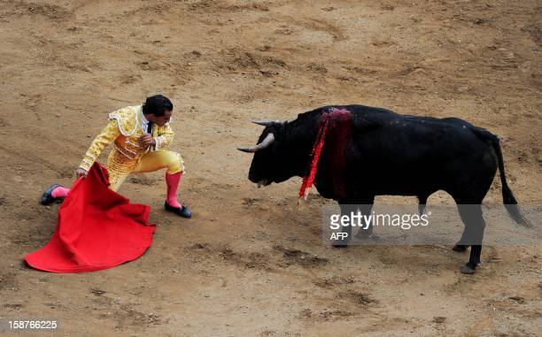 Spanish bullfighter Ivan Fandino looks into the eyes of the bull during a bullfight at the Canaveralejo bullring in Cali department of Valle del...