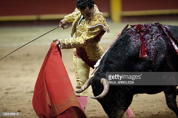 Spanish bullfighter Ivan Fandino performs during a bullfight at La Macarena bullring on February 2 2013 in Medellin Antioquia deparment Colombia AFP...