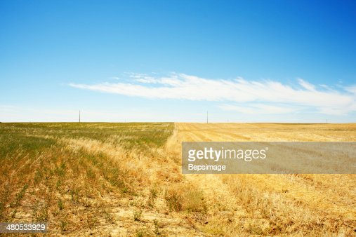 Spanish countryside : Stock Photo