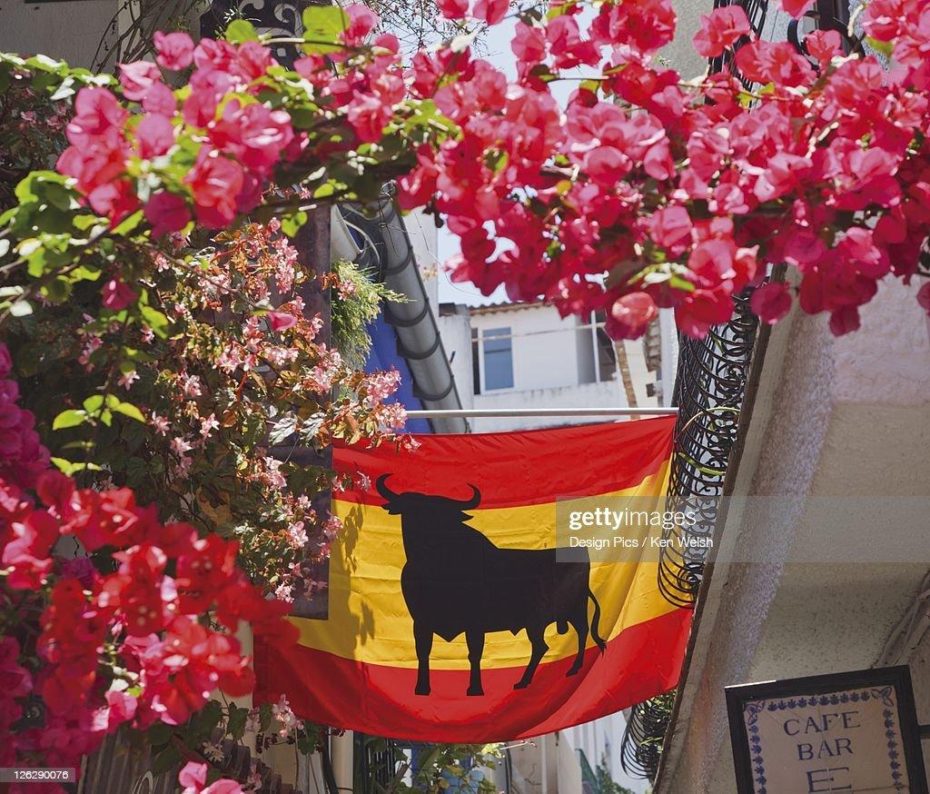 spanish flag with black bull hung across the narrow bougainvillea
