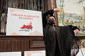 Flamenco Performance Protest In Madrid