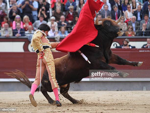 Spanish matador Alejandro Talavante performs a pass on a bull during the San Isidro Feria bullfight at the Las Ventas bullring in Madrid on May 29...